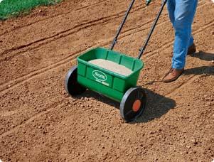 seeding_new_lawn_T